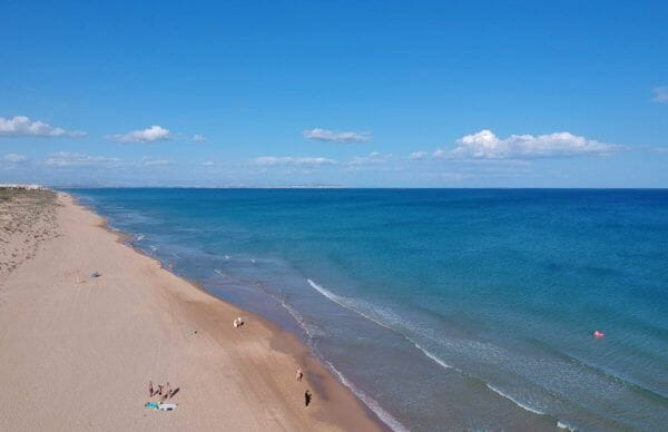 Playa del Camp | Guardamar
